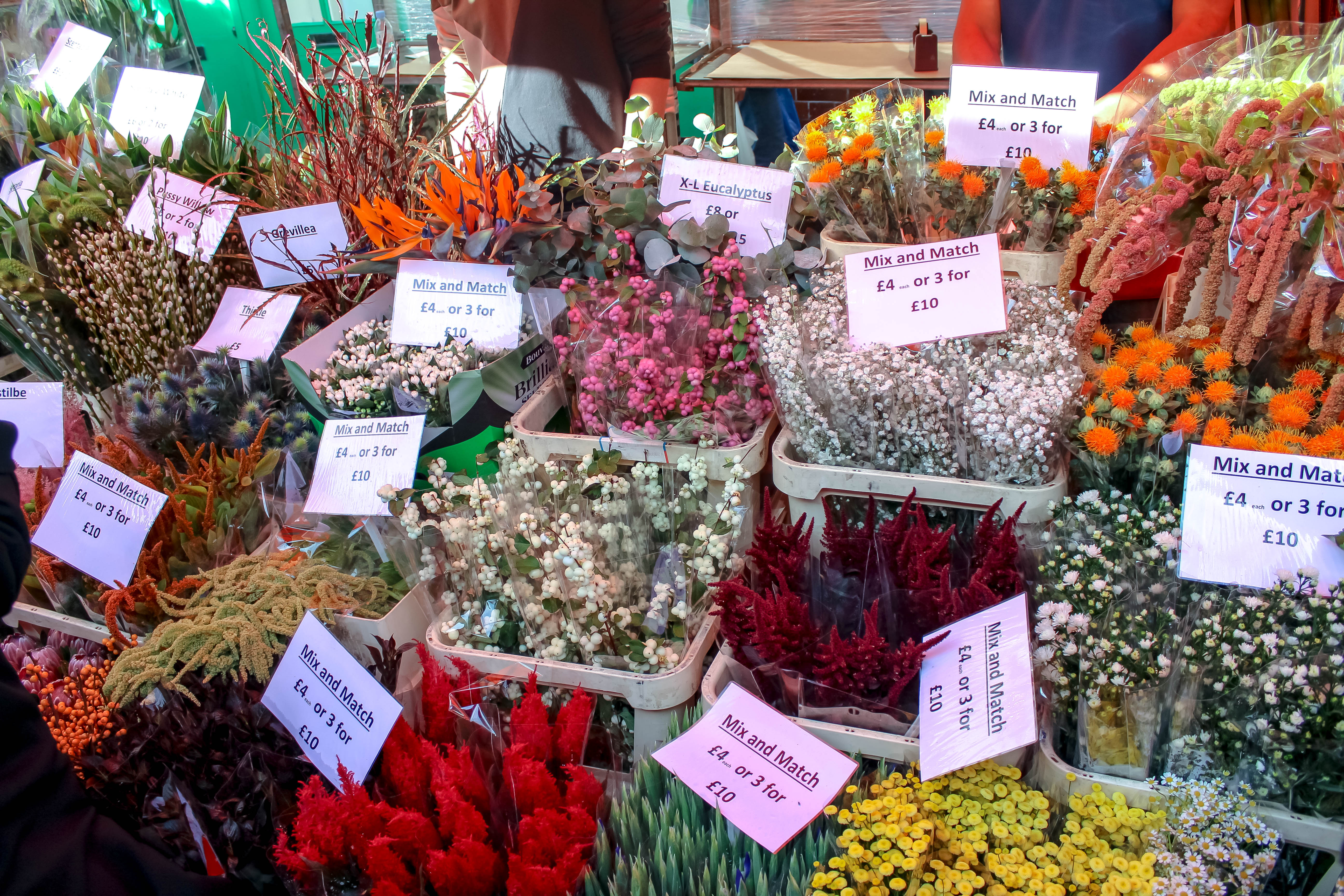 Columbia Road Flower Market + Campania